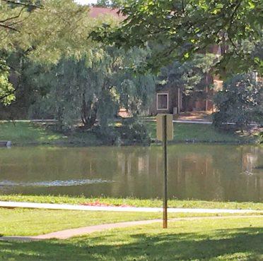 Three Pond Neighborhood in Voorhees